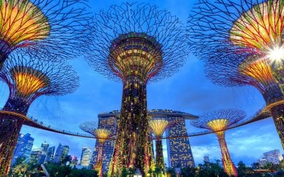 The Ultimate Guide to Practicing Medicine in Singapore – Part 2